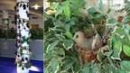 Picture of vines up column and knitted bird in nest