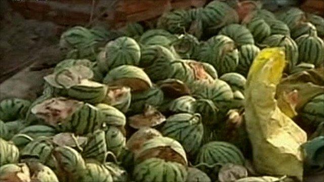 Burst watermelons