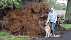 Nicole and her dog standing in front of an uprooted tree