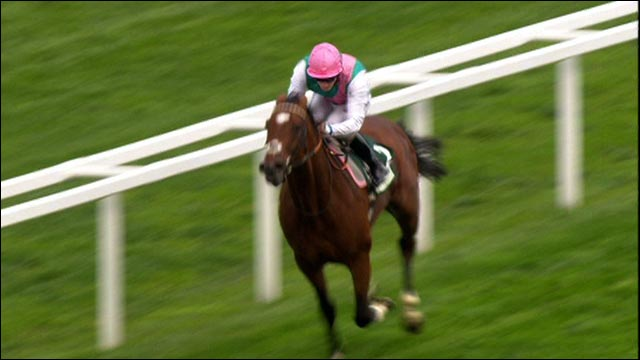 Classy Frankel storms to 2010 Ascot win