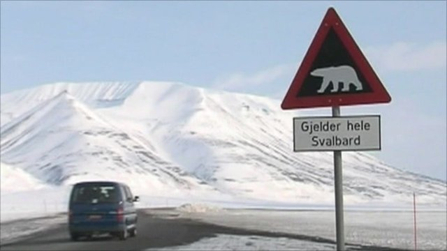 Polar bear warning sign in Norway