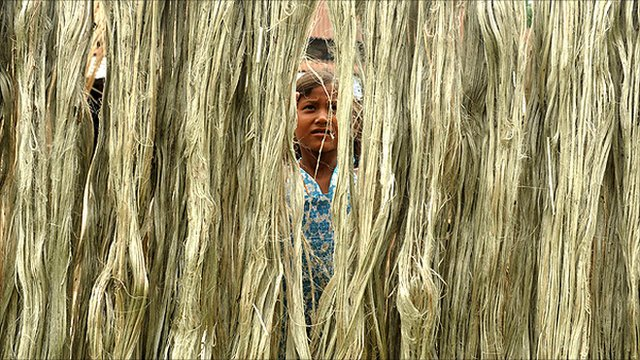 Girl hanging up jute fibres to dry