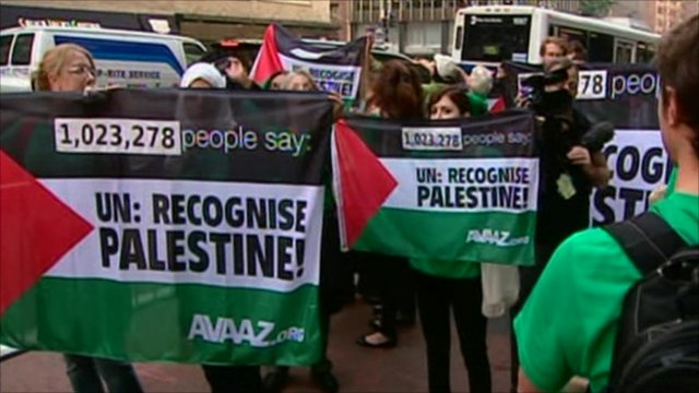 Pro-Palestinian supporters
