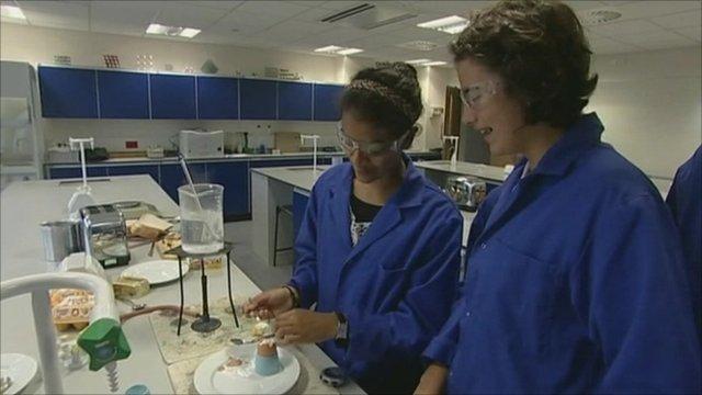 Pupils in laboratory