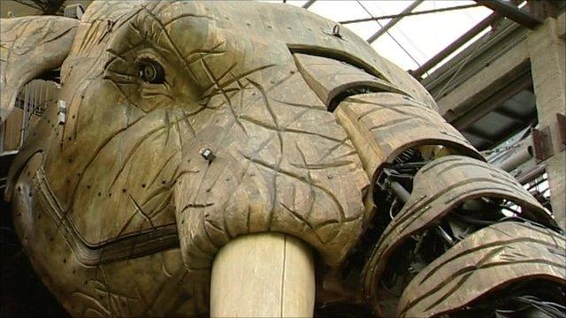 French 'elephant'