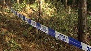 Woodland where body was found in 1991