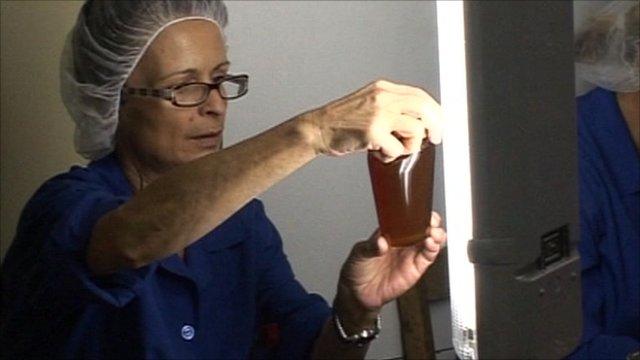 Honey factory inspector