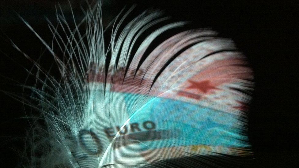 A selection of euro banknotes projected onto a goose feather