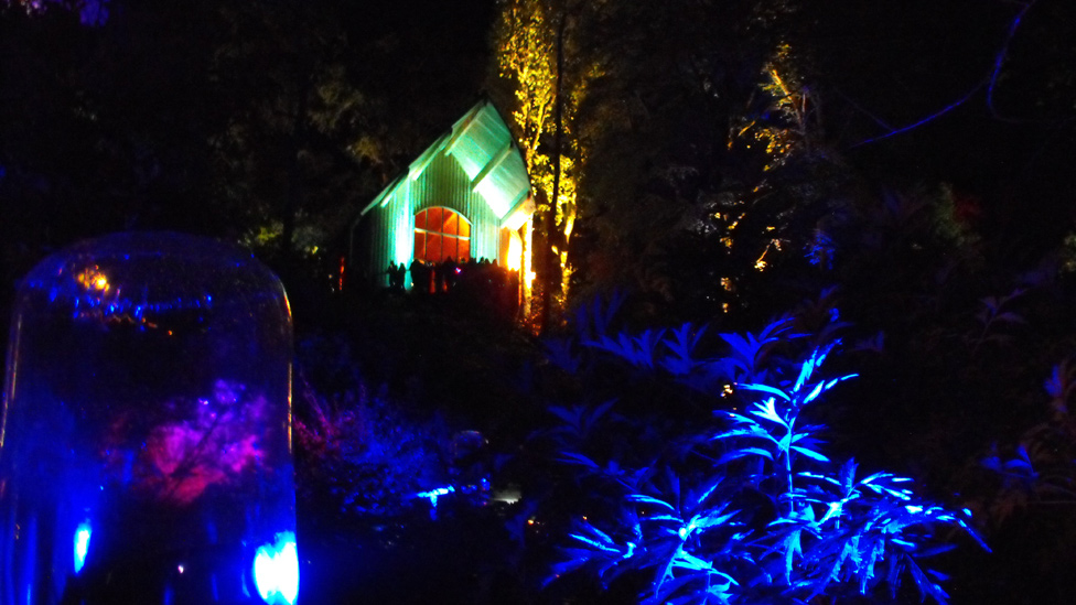 Colourful lights at the Enchanted Forest
