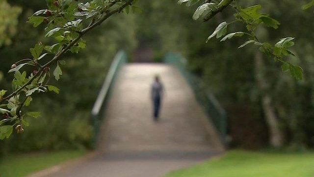 Figure walking over bridge in park