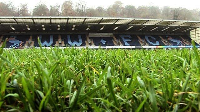 Detail of a grass pitch