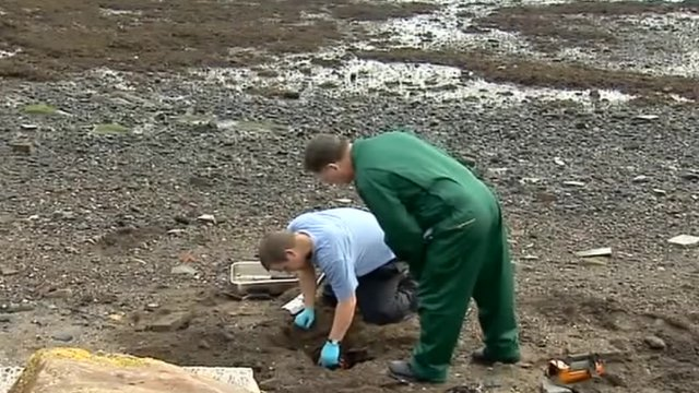 Scientists on Dalgety Bay beach