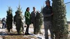 US Army Sgt Evan Kirouak (second from right) with his fiancee Aeryn Dalh receives a free Christmas tree at Fort Carson