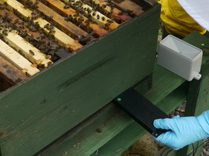 Monitor being inserted in hive