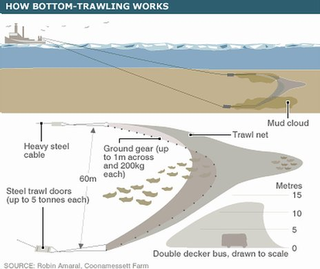 Schematic of bottom-trawling