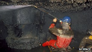 Zebra mussels being cleared from a power station