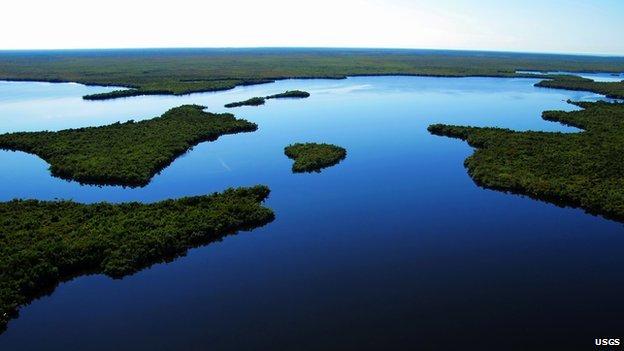 Everglades USGS
