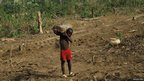 A boy holding a log in Liberia (Photo Tamasin Ford)