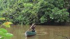A man rows a boat on a river surrounded by lush rainforest vegetation in Liberia (Photo: Sapo National Park)