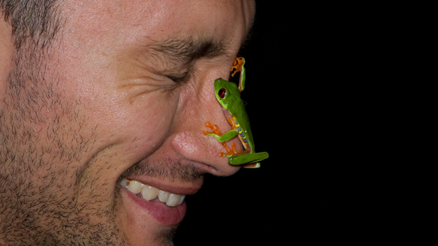 Frog on face