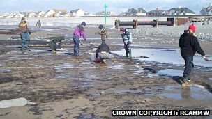 Archaeologists and students carry out the work on Borth beach in a race against the tide
