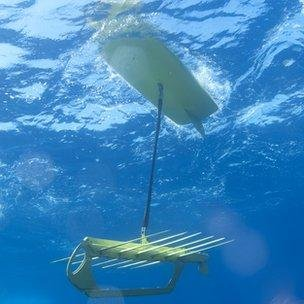 Swimming robots break world distance record in Pacific