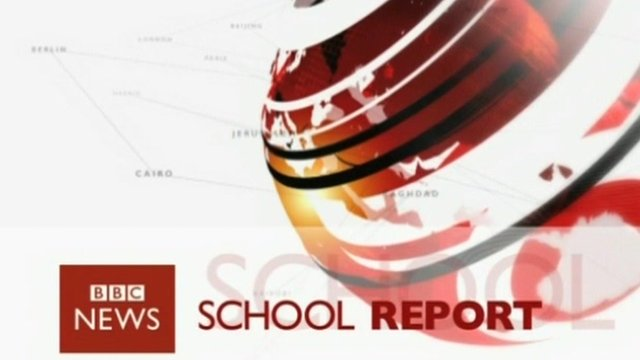 School Report logo
