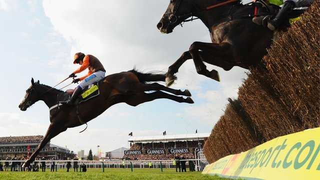 Long Run in the 2011 Cheltenham Gold Cup Chase