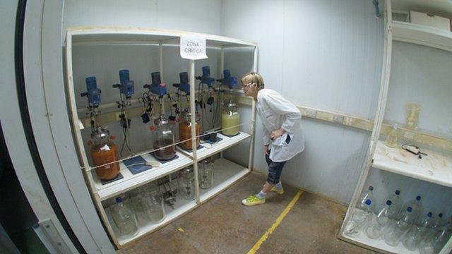 Katia Moskvitch at Biosigma, Chile