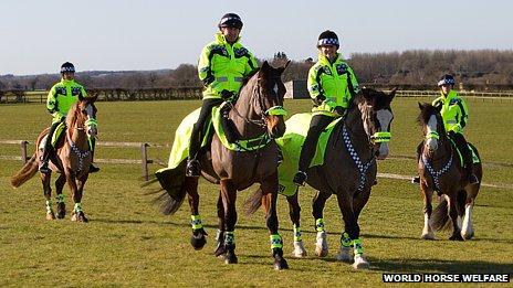 Special officers on horseback at Snetterton, Norfolk