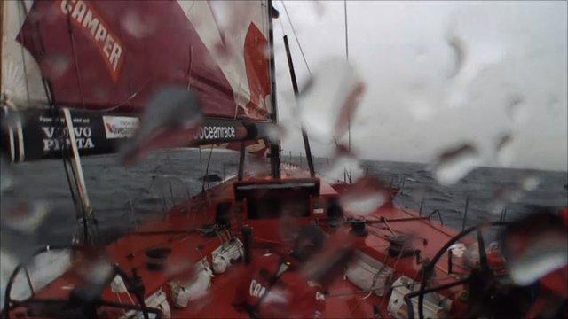 Team New Zealand avoid whale collision
