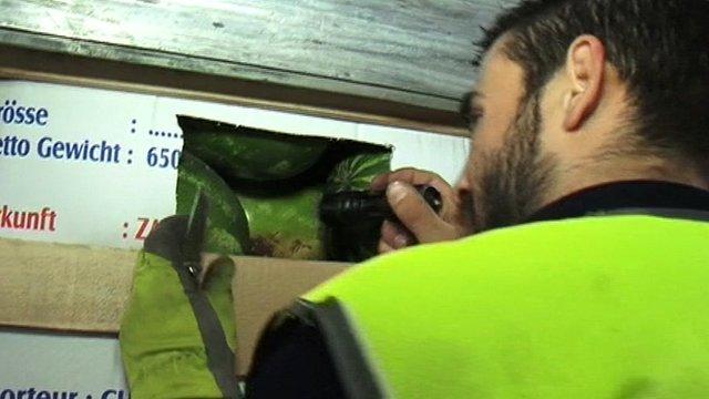 Border authorities in Patras