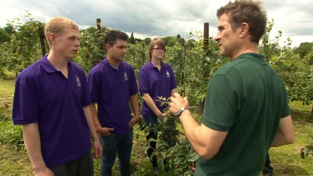 Hadlow College students being taught