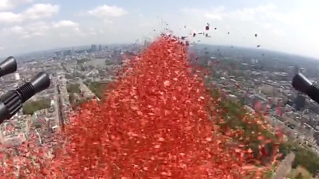 Poppies dropped during flypast
