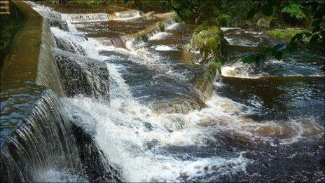 Afon Hafren