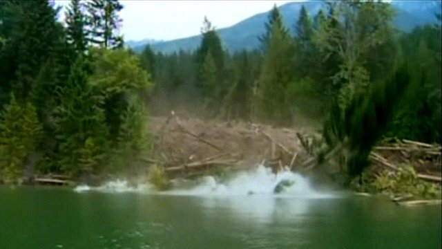 Trees sliding into the water in Canada