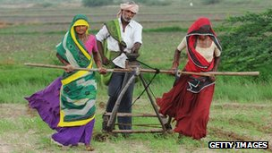 Indian farmers, Gujarat