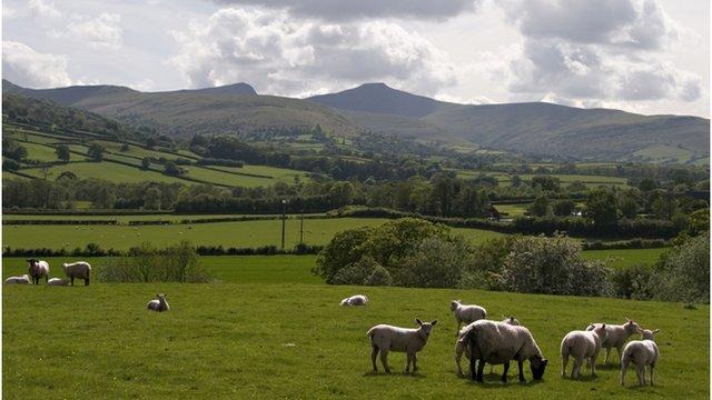 fferm yn ne Cymru
