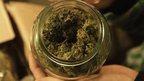 post-image-Los Angeles city sued over marijuana shop ban