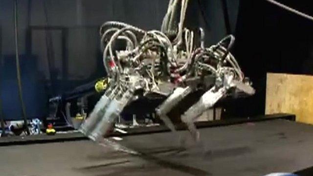 Cheetah robot