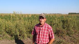 Farmer Jeremy Leech resistant weeds