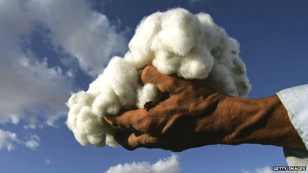Someone holding some cotton