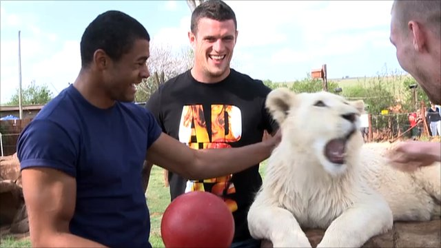 The England players meet a white lion