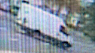 The van spotted on CCTV by a shop on Cowbridge Road in Ely on Friday afternoon