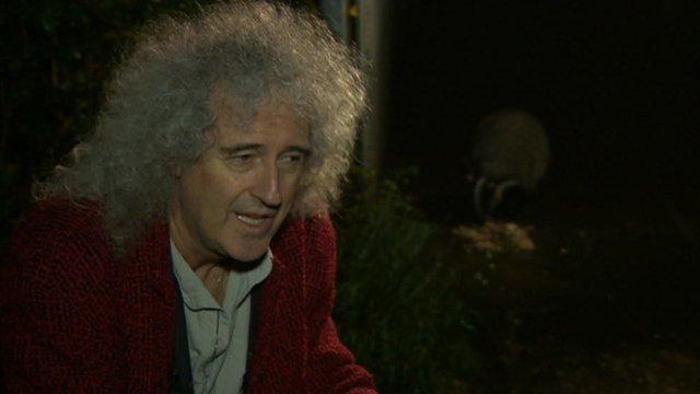 Brian May with badger