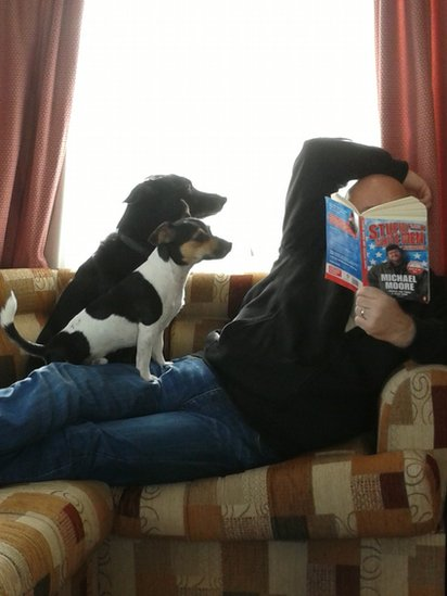 Man reading a book with two dogs