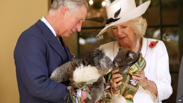 Prince Charles and Camilla, Duchess of Cornwall, hold koalas at Government House, Adelaide