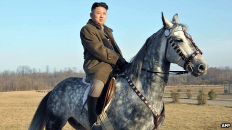 Photo of Kim Jong-un released by North Korea's official Korean Central News Agency (KCNA) on 20/11/12