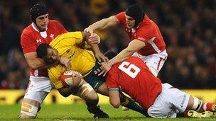 Cymru v. Awstralia