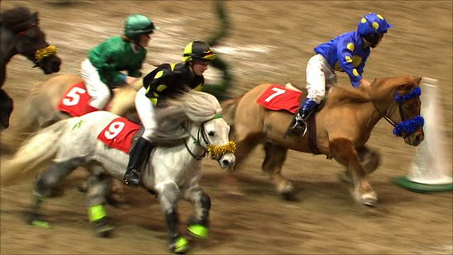 Jockeys compete in the Shetland Pony Grand National